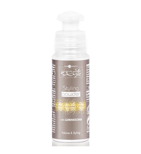 HAIR COMPANY Моделирующая Пудра Styling Powder, 5г