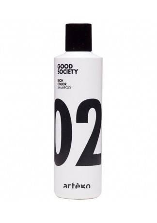 Artego Шампунь для Окрашенных Волос Rich Color Shampoo, 250 мл шампунь для окрашенных волос shampoo dyed hair 250 мл