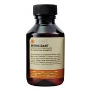 Шампунь Antioxidant Антиоксидант для Перегруженных Волос, 100 мл
