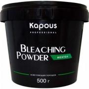 Пудра Bleaching Powder Осветляющая Ментол, 500г