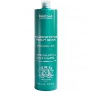 Шампунь Hydra Balance & Repair Shampoo Увлажняющий для Очень Сухих и Поврежденных Волос, 1000 мл