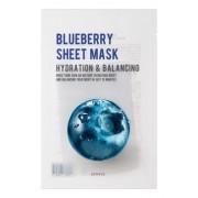 Маска Purity Blueberry Sheet Mask Тканевая с Экстрактом Черники, 22 мл