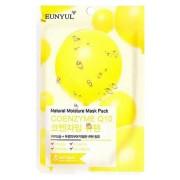 Маска Natural Moisture Mask Pack Coenzyme Q10 Тканевая с Коэнзимом Q10, 22 мл